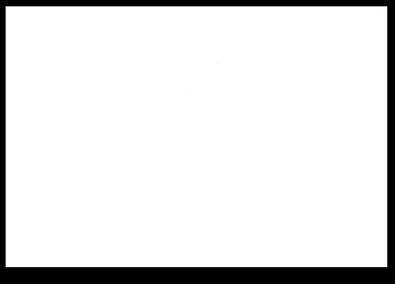 Saks logo white